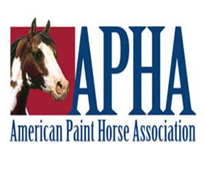 APHA - American Paint Horse Association