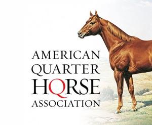 American-Quarter-Horse-Association