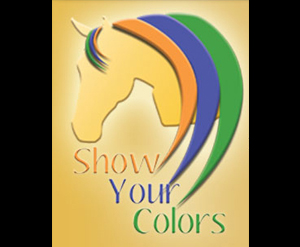 NSBA-Champ-Show-Your-Colors-horse
